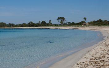 Es caragol top beach
