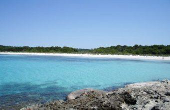 beach son saura