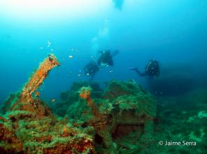isla de sec top diving sites in mallorca