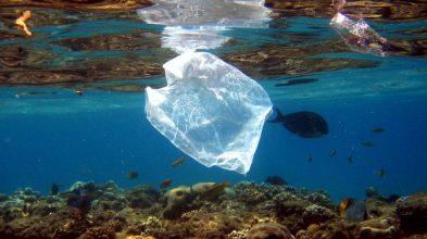 plastico en el mediterraneo proyachts